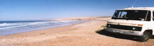 Hansi beside the Atlantic coastline