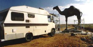 Hansi and new camel, Tan Tan
